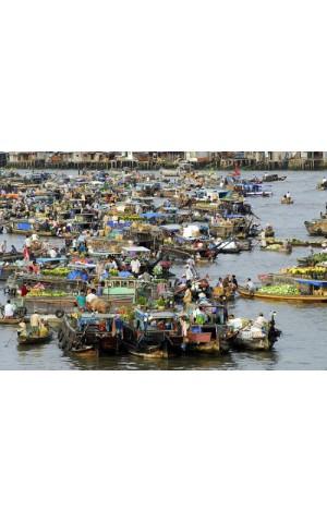 Bộ sưu tập số : Chính sách kinh tế vùng Đồng bằng Sông Cửu Long